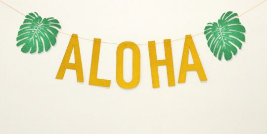 Hawaii Party Banner Aloha Letter Party Garland